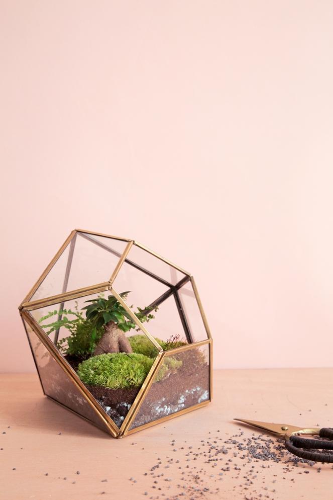 terrarium-diy-mamie-boude6